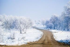 mandat zima