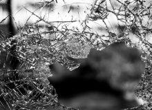 Dodatkowe ubezpieczenie od ryzyka uszkodzeń szyb samochodowych